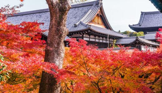 映画「本能寺ホテル」のロケ地7ヶ所!現在と過去の京都の舞台はどこ?